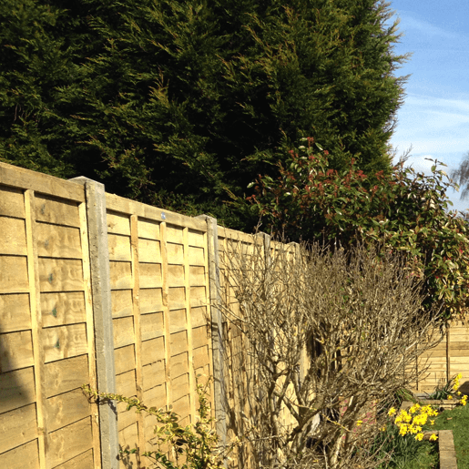 Fencing Contractors Guildford